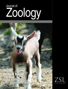 Journal of Zoology Virtual Issue