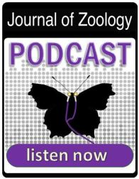 JZO_butterfly_podcast_image