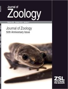 jzo-anniversary-issue-oct-2016-cover