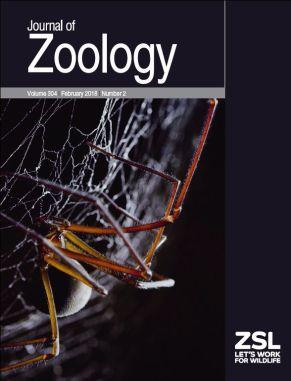 Cover JZO February 2018